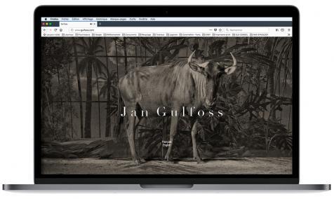 Création site Internet Jan Gulfoss à Saint-Rémy de Provence