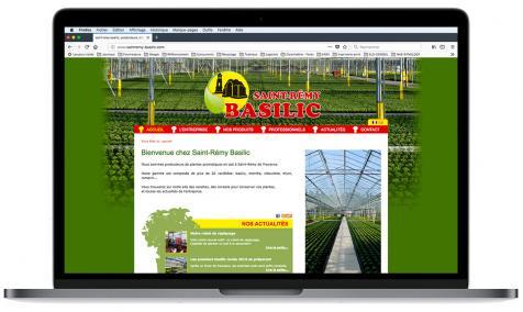 Création site Internet Saint-Rémy Basilic à Saint-Rémy de Provence